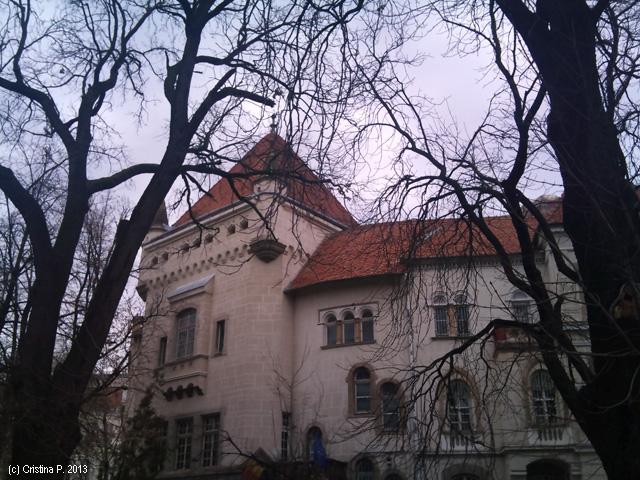 Palatul Cultural, partea cu intrarea la muzeul de stiinte naturale