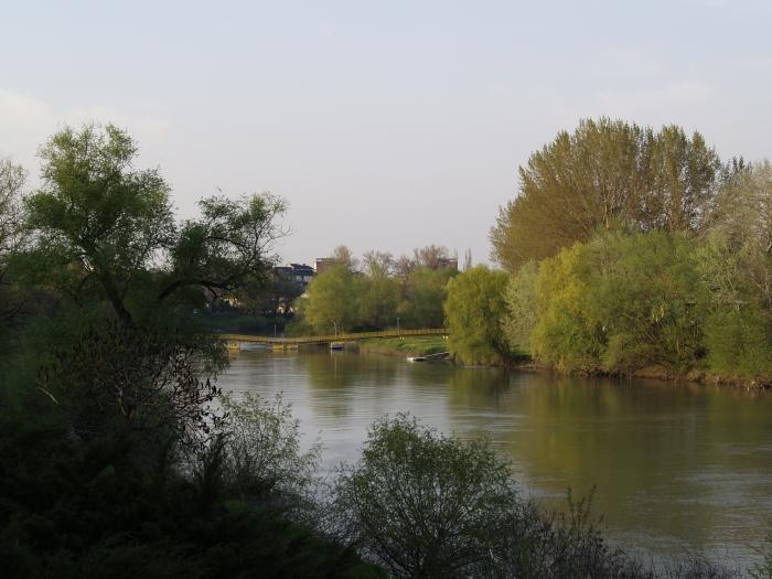 Muresul in Arad