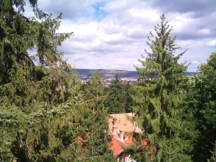 Vedere din Turnul de Apa