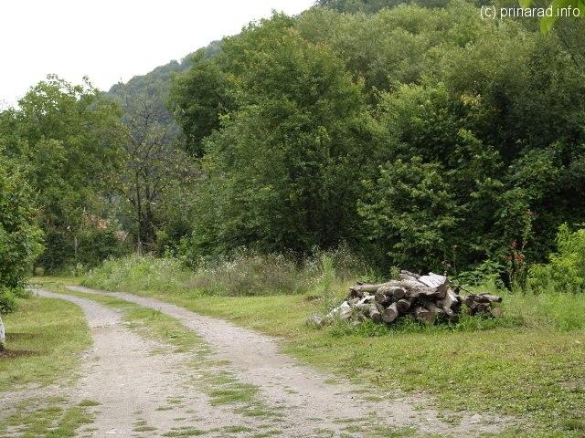 Un drumeag undeva in spatele Teberei